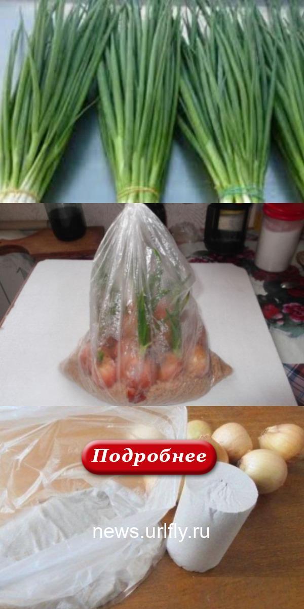 Я больше не покупаю зеленый лук. Два необычных способа вырастить зеленые перья без использования земли.